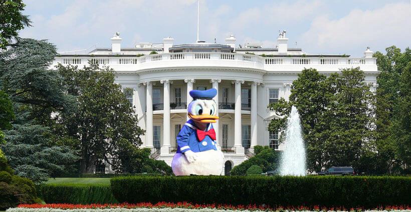 Donald Duck vor dem weißen Haus
