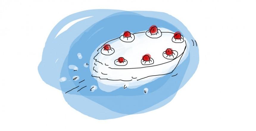…fliegt die Torte…
