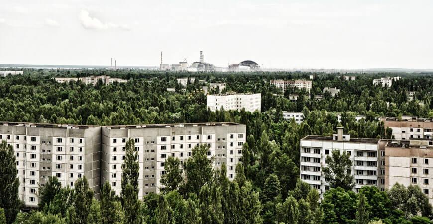 Die Natur im Einklang mit sich. Vorbildliche Renaturierung in Tschernobyl.